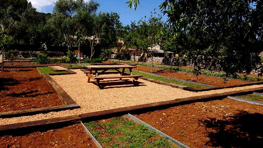 jardin funcional Palma 4
