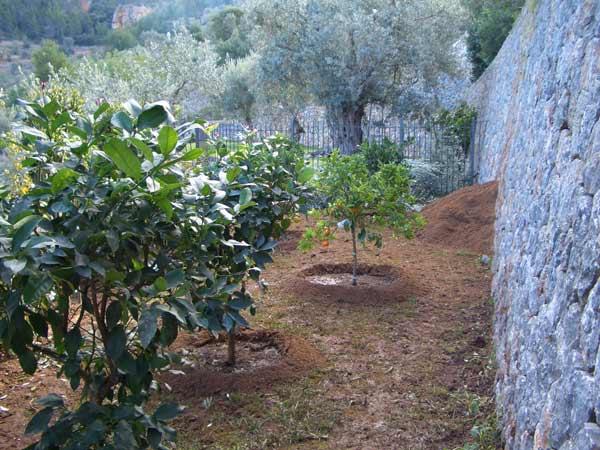 jardin-huerto1