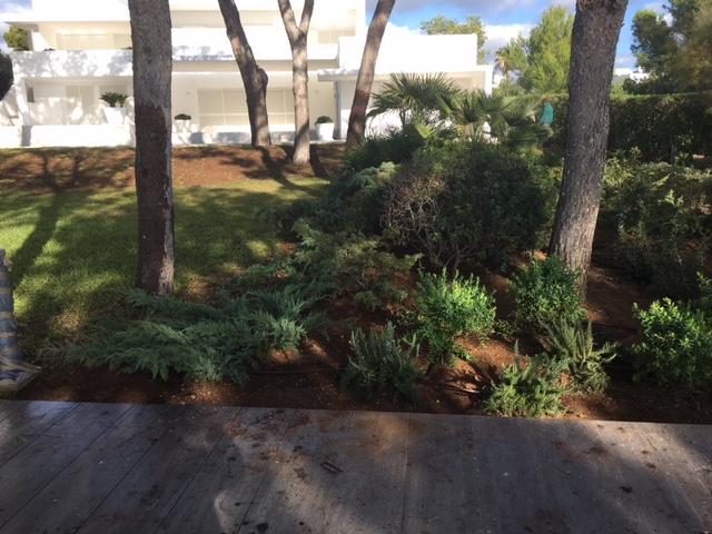 reforma jardin vivienda 2