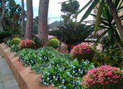 HGPCDM jardinera2