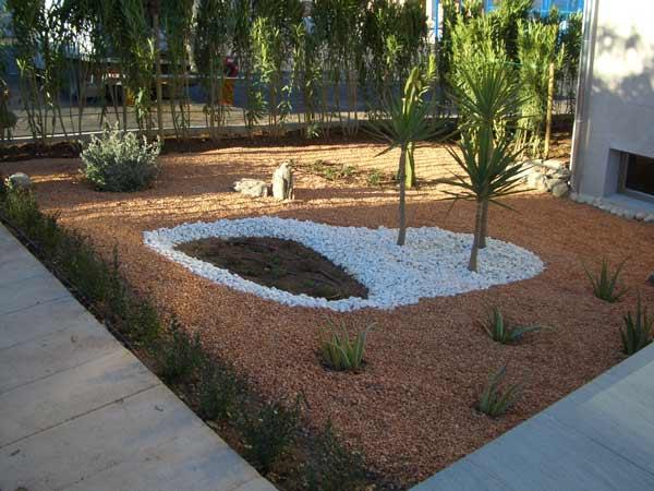 jardin-arido1