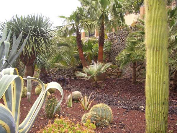 jardin-arido2