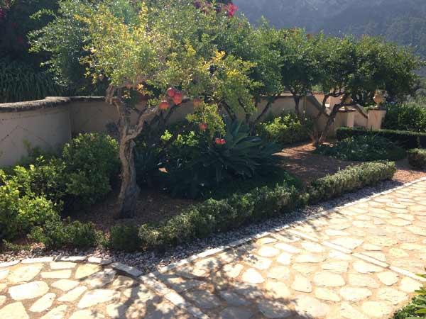 jardin-arido3