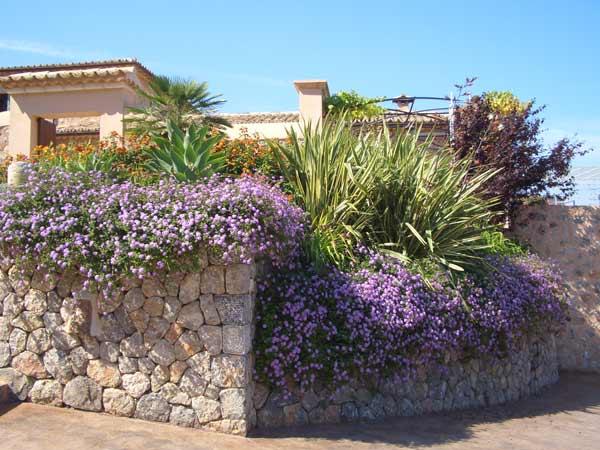 jardin-mediterraneo1