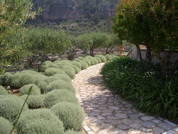 jardin-mediterraneo2