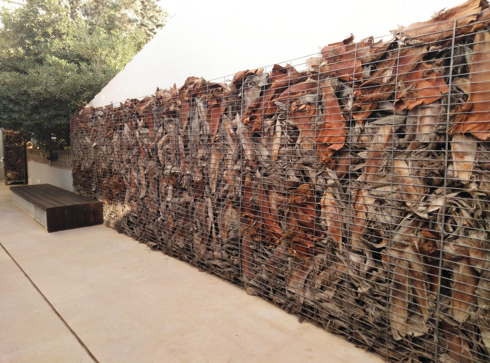 js palmastay wall
